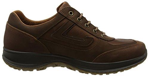 Grisport Airwalker, Chaussures D'escalade Basses Pour Homme Brown (tan)