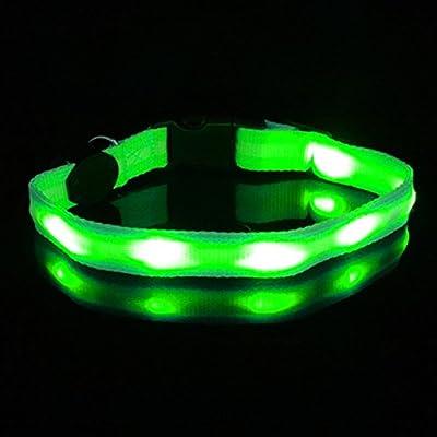 Hunde Leuchthalsband LED Hundehalsband Leuchtband Leuchtschlauch Blinkhalsband
