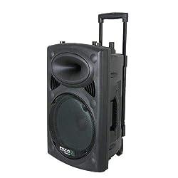 Ibiza 15-6018 Mobile Beschallungsanlage 25 cm (10 Zoll) mit USB-MP3, BT, REC, VOX, 1 VHF und 1 Kabelmikrofon, 500W