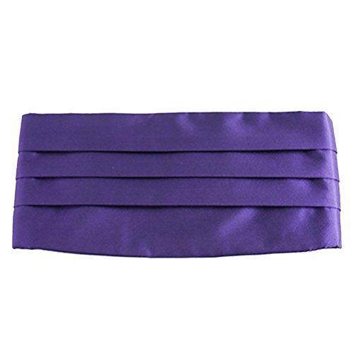 Zhhlaixing Accessoires High Quality Mens Suit Girdle Various Colors for You To Choose Dark Purple