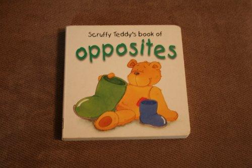 Scruffy Teddy's Book of Opposites