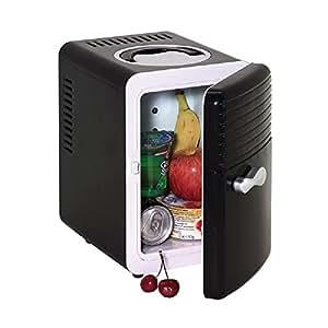 Mini Réfrigérateur Noir avec 12V et Fiche 240V Convient également pour les médicaments