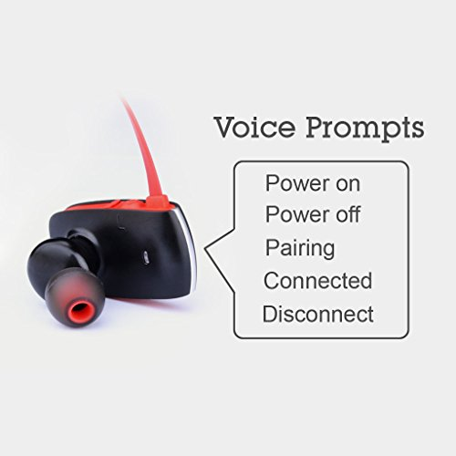 Avantree Auricolari Sport Senza Fili Bluetooth 4.0 aptX Universali Super Bass - Cuffie in ear con microfono Wireless con Comandi Vocali - Sacool Pro Noir