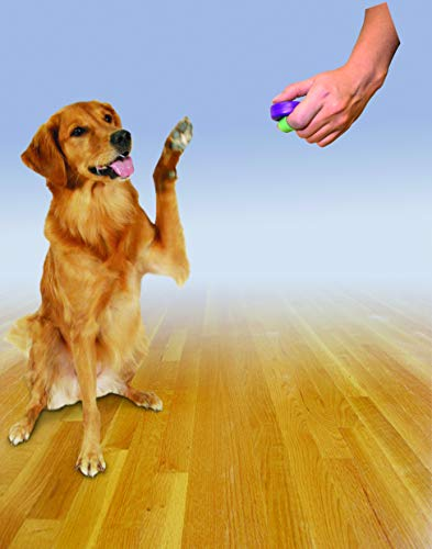 PetSafe Clik-R Training Tool, Obedience Aid, Clicker for Dogs