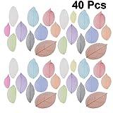 SUPVOX 40 piezas esqueleto hojas hojas secas naturales para bricolaje arte scrapbooking artesanía cardmaking boda adorno colores mezclados