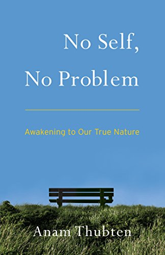 No Self, No Problem: Awakening to Our True Nature (English Edition)