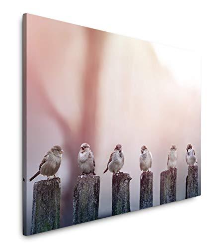 Paul Sinus Art Vögel auf Holzstämmen 150 x 100 cm Inspirierende Fotokunst in Museums-Qualität für Ihr Zuhause als Wandbild auf Leinwand in XXL Format -
