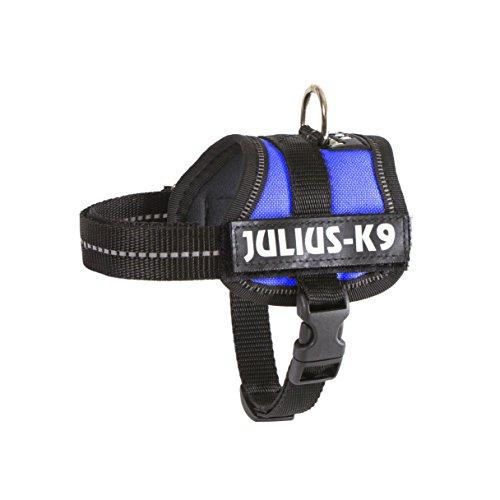 JULIUS-K9, 162B-BB2, K9-Powergeschirr, Größe: Baby 2, Blau