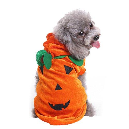 PU Ran Katze Hund Halloween Lovely Kürbis Kostüm Party Fancy Kleid Pet Apparel Hoodie