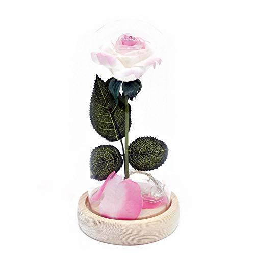und Biest Rose, Rose Dome Glasabdeckung mit weichen LED-Leuchten, Rose Lichter, romantische Geschenke, Wohnkultur, Muttertagsgeschenke, Hochzeitsgesellschaft liefert ()