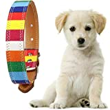 Angelo Morri Hundehalsband aus Leder, für kleine und mittelgroße Hunde, verstellbare Größe