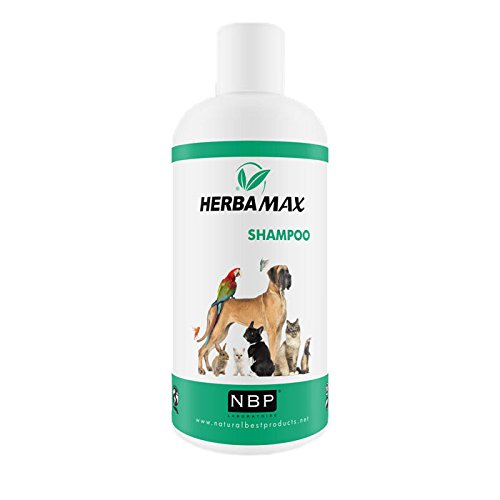 Herba MAX Naturprodukt - Champú ecológico para Perros y Gatos (200 ML)