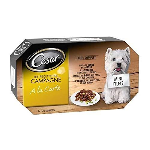 CESAR Barquettes Mini filets en sauce - 4 variétés - Pour chien adulte - 4 x 150 g Mini-filets