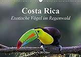 Costa Rica - Exotische Vögel im Regenwald (Wandkalender 2020 DIN A3 quer): Impressionen aus der Vogelwelt in Costa Rica (Monatskalender, 14 Seiten ) (CALVENDO Tiere) -