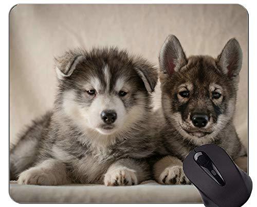 Yanteng Alfombrillas para ratón, Alfombrillas para Juegos, alfombras para Animales, Bordes cosidos