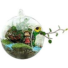 SoledìVaso in Vetro Trasparente Appeso Portafiori Pianta (Sfera) - Hanging Flower Vase