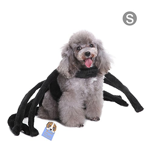 Yunt Spinne Halloween Kostüm Plüsch Spider Cosplay Dog Hundekeidung für Hautier Hunde Katzen (Katzen Spider Für Kostüm)