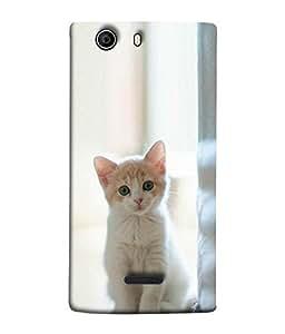 FUSON Designer Back Case Cover for Micromax Canvas Nitro 2 E311 (Cute Looks White cat Anime art Crazy expressions)