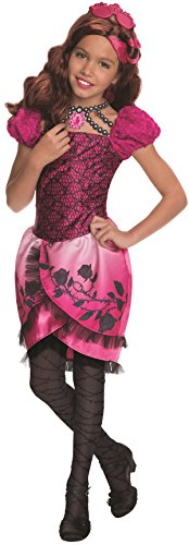 - Briar Beauty Kostüm