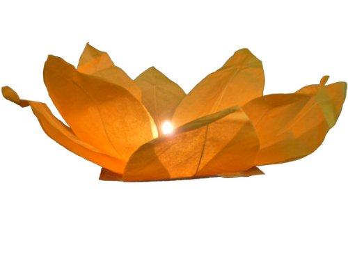 terne Wasserlaternen inkl. Teelichter alle Farben, Farbe wählen:orange ()