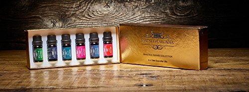 Top 6 Sets Duftmischungen Enthalten Atmen, Harmonisieren, Heilung, Liebe, Entspannen und gut schlafen 10ml Ätherische Öle