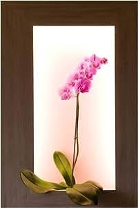 TABLEAU VEGETAL ECLAIRE Orchidée mauve pour la saint valentin