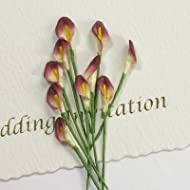 Syntego - Miniatura realizzata a mano, fiori di calle, colore: panna/vinaccia, pacco da 10