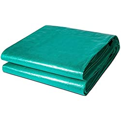 Lonas Duo Tarpaulin Tarp Cover Heavy Duty Thick Material, Waterproof, Great for Tarpaulin Toldo Carpa, Barco, RV o Pool Cover -0.45mm 200g / m² (Color : Transparent Green, Tamaño : 5X 10m)