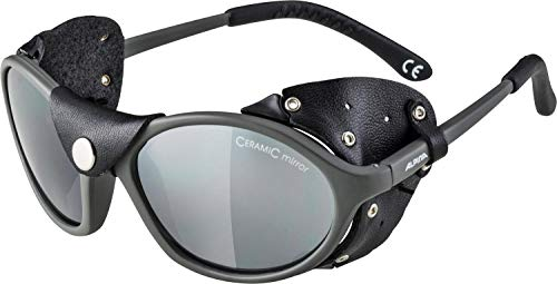 Alpina Unisex- Erwachsene SIBIRIA Sportbrille, grau, One Size