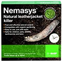 Nemasys leatherjacket killer (100sqm pack)