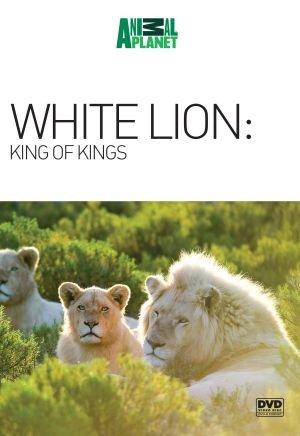 White Lion: King of Kings [DVD-R] d'occasion  Livré partout en Belgique