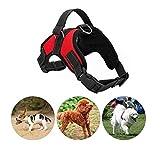 Tie langxian Hundegeschirr,Haustier Brustgurt,Haustier Weste Atmungsaktives Hundegeschirr aus (L, Rot)