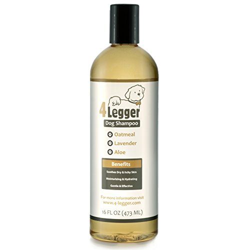 4-Legger Certified Organic Haferflocken All Natural Hundeshampoo
