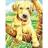 Labrador Retriever Pencil-by-Number