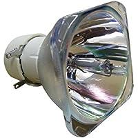 Philips ECL 1731di UHP lampada di ricambio per 210W/170W 0.9e20.9trasparente prezzi su tvhomecinemaprezzi.eu