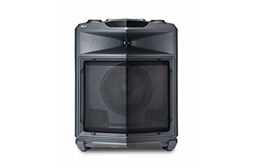 LG FJ3 Mono Lautsprecher (50W, Bluetooth, USB, FM Radio) Lg Bluetooth Stereo