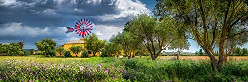 Panorama Wandbild auf Alu-Dibond. Insel Mallorca mi typischer Windmuehle sowie Finca mit Olivenbaeumen. Galerie Fine Art Print auf Aludibond. Panoramabild als Kunst Wanddeko Wand Foto Bild