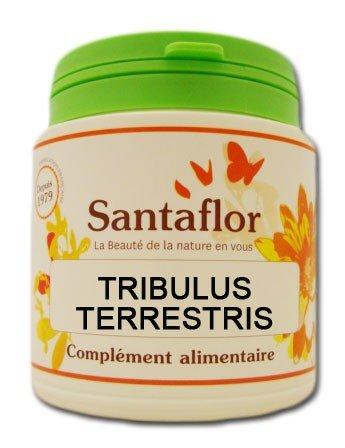 Tribulus terrestris - gélules1000 gélules gélatine végétale
