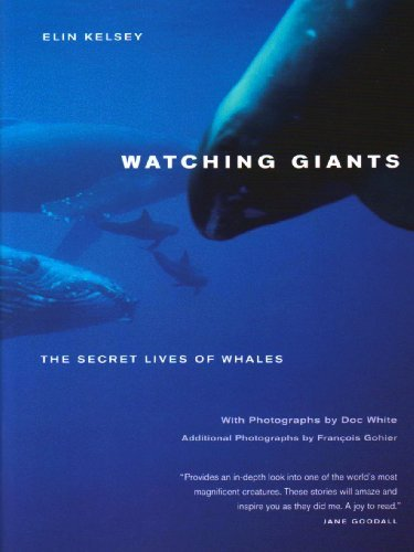Watching Giants: The Secret Lives of Whales by Elin Kelsey (2009-11-16)