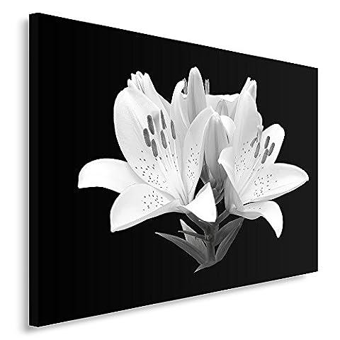 Feeby Frames, Tableau seul panneau , Tableau imprimé xxl, Tableau imprimé sur toile, Tableau deco, Canvas 70x100 cm, FLEURS, LYS, MACRO, NOIR ET