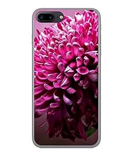 PrintVisa Designer Back Case Cover for Apple iPhone 7 (Rare Beautiful Classy Pic Flower Closeup)