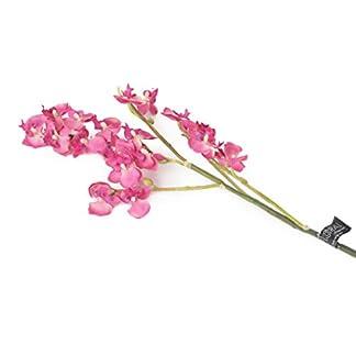Floral Elegance 69cm Artificiales con Tallo único de orquídeas Artificiales en Miniatura