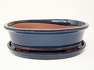 Bonsaischale glasiert blau oval, 26 x 17,5 x 7 cm MIT UNTERSETZER + passende Abdecknetze