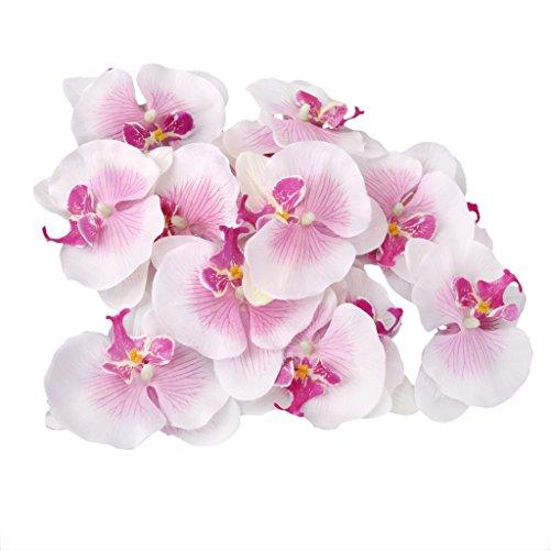 lot-de-20pcs-9cm-orchide-papillon-fleur-artificielle-tte-de-fleur-dcor-pour-mariage-accessoire-de-ba