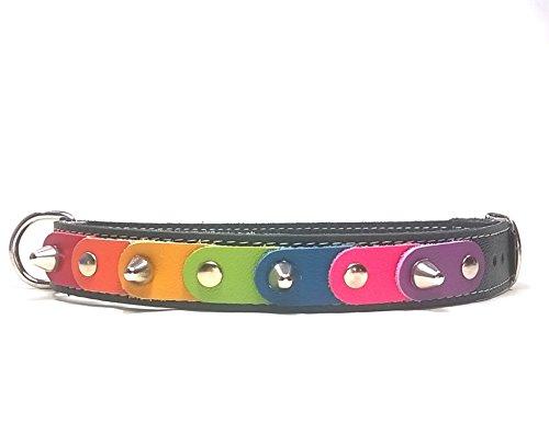 Superpipapo Collar para Perros Medianos de Cuero | Diseño Original con los Colores Arcoiris de Piel