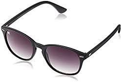 MTV Wayfarer Sunglass (Black) (MTV-117|C1 50)