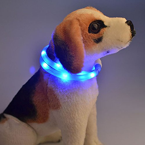 Itian USB Ricaricabile Impermeabile Luci a LED Fluorescenti Lampeggianti Cinghia della Fascia Registrabili di Modo Cane Collare (Blu)