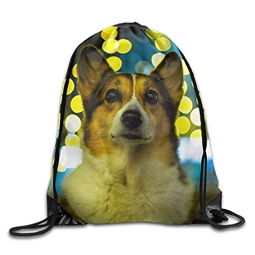 FTKLSS Lightweight Foldable Large Capacity Welsh Corgi Dog Glare Beautiful Background Men & Women Drawstring Backpack Travel Bag