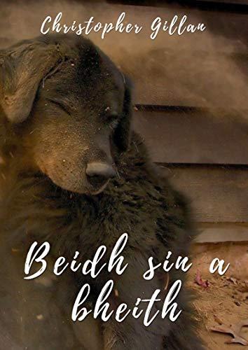 Beidh sin a bheith (Irish Edition) por Christopher  Gillan