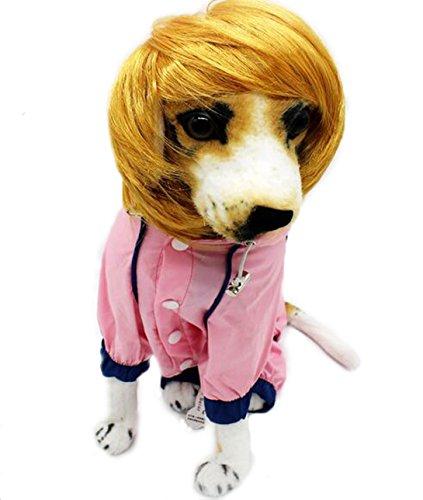 Crazy Shop Funny Pet Hund Katze blond kurz Perücken BOBO syethetic Haar Cosplay - Blonde Katze Kostüm